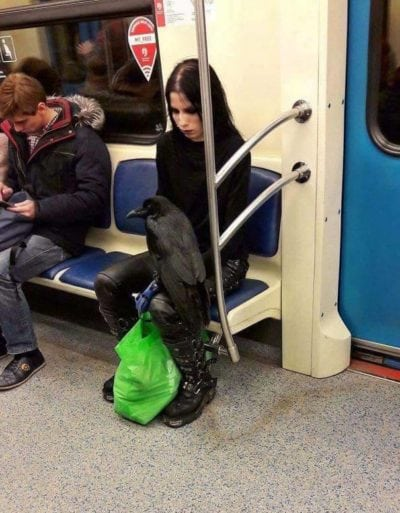 a girl with bird in subway, weird people