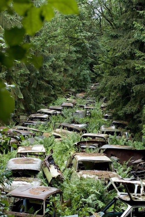 Car graveyard, Ardennes, Belgium