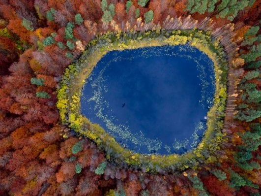 Autumn at the lake in Pomorskie, Poland