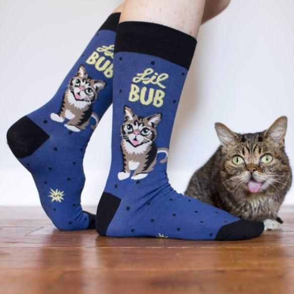 Lil Bub famous cat,top instagrame pet