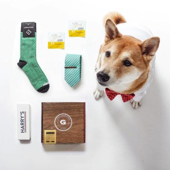 mens famouse dog,top Instagram pet list