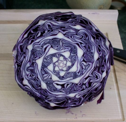 Cabbage is completely geometric inside