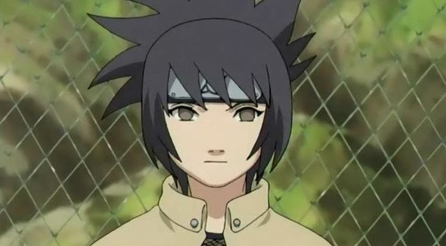 anko could be Metal Lee's Mother