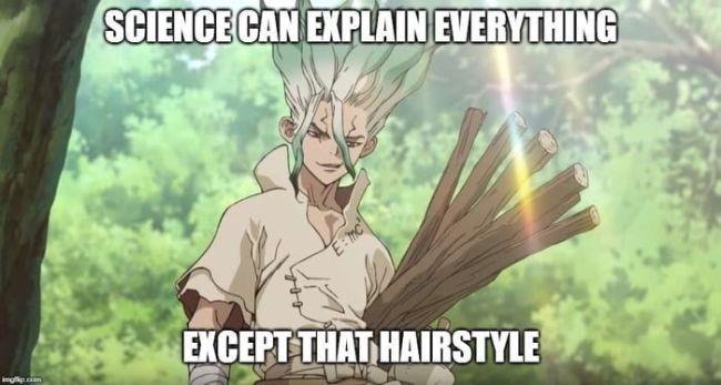 funny Dr. Stone anime Memes